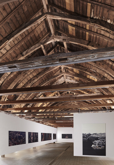 Franziska Rutishauser reeling to real Kunstverein Bad Salzdetfurth Foto Pilz Fotodesign 2016